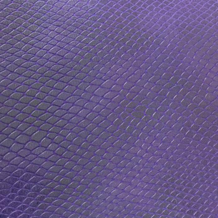 Viola pitone